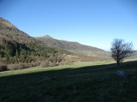 Vue sur le Puy Violent